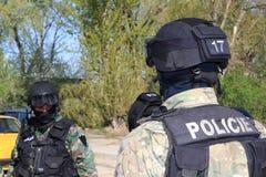Spezielle Polizeikommandos nehmen einen Terroristen fest lizenzfreie stockfotos