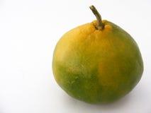 Spezielle Reihe grüne Mandarinenmalereien für den Fruchtsaft, der 2 verpackt Lizenzfreies Stockbild