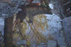 Spezielle Winter- und Herbstansicht stockfoto
