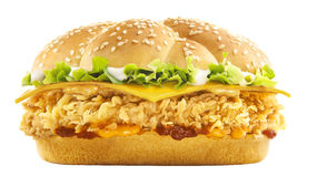 Spezieller Burger Lizenzfreies Stockbild