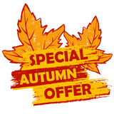 Spezielles Herbstangebot mit Blatt-, Orange und Braunemgezeichnetem Aufkleber Lizenzfreie Stockfotos