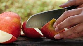 Spezzettamento della mela a pezzi sana archivi video