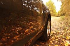 Spezzetti l'automobile nella foresta di autunno immagine stock