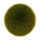 Sphère d'herbe illustration de vecteur
