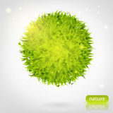 Sphère d'herbe verte Image stock