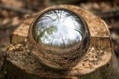 Sphère se reflétante à l'arrière-plan de forêt Photographie stock