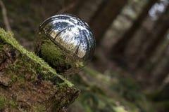 Sphère se reflétante à l'arrière-plan de forêt Photo stock