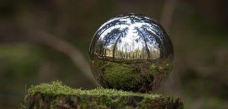 Sphère se reflétante à l'arrière-plan de forêt Photos stock