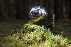 Sphère se reflétante à l'arrière-plan de forêt Photographie stock libre de droits