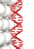 Sphères blanches lustrées et structure rouge d'ADN Image libre de droits