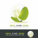 Sphere 3d design. Sphere with grass inside, shiny ball. Eco symbol Vector Illustration