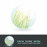 Sphere 3d design. Sphere with grass inside, shiny ball. Eco symbol Royalty Free Illustration
