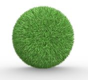 Sphere of grass Stock Image