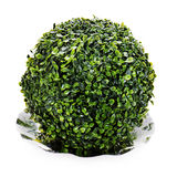 Sphere from green artificial grass on plate isolated on white Royalty Free Stock Photo