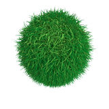 Sphere from green grass Stock Images