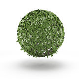 Sphere from green leaf Royalty Free Stock Photography