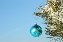 The  sphere hanging on a coniferous branch Royalty Free Stock Photo
