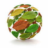 Sphere from red, green and yellow leaf Royalty Free Stock Photography