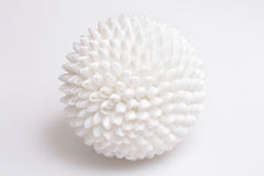Sphere of seashells. Stock Photo