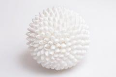 Sphere of seashells. Stock Photo