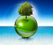 Sphere tree -  ecology concept. Green sphere on the water with roots and tree, the concept of ecology and purity Stock Photos