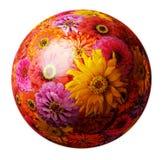 Sphere from zinnia elegans flowers Stock Photo