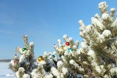 Spheres on snow Stock Photography