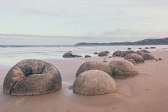 Spheric Moeraki Boulders on the Eastern coast of New Zealand royalty free stock photography