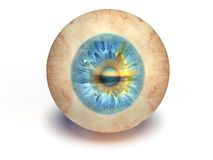 Spherical blue eyes Royalty Free Stock Images