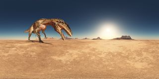 Spherical 360 degrees seamless panorama with the dinosaur Acrocanthosaurus in a desert landscape. Computer generated 3D illustration with a spherical 360 degrees Stock Photography