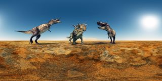 Spherical 360 degrees seamless panorama with the dinosaurs Tyrannosaurus Rex and Albertaceratops Stock Image