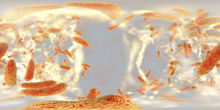 Spherical panorama view inside biofilm of antibiotic resistant bacteria Klebsiella Stock Images