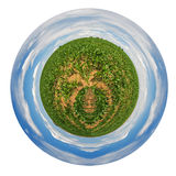 Spherical view of country corn field Stock Photos