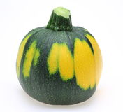Spherical zucchini Royalty Free Stock Photos