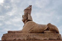 Sphinx à Pétersbourg Photo libre de droits