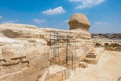 Sphinx égyptien célèbre à Gizeh de l'arrière photo stock
