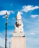 Sphinx über blauem Himmel auf Universitetskaya-Damm von Neva rive Stockfotografie