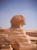 Sphinx. Great Sphinx of Egypt, ancient architecture royalty free stock image