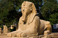 Sphinx. Details of Egyptian art, Sphinx in Memphis Royalty Free Stock Image
