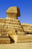 Sphinx Photo libre de droits