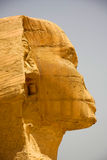 Sphinx. The Sphinx Up close and very personal Royalty Free Stock Photos