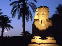 Sphinx. Alley near Luxor Temple, Egypt Royalty Free Stock Photography