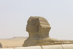 The Sphinx Royalty Free Stock Image