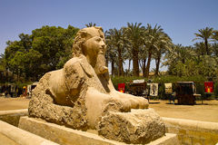 Sphinx Royalty Free Stock Photography