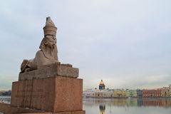 Sphinx. On the University Embankment in St. Petersburg, Russia Royalty Free Stock Photos
