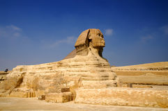 Sphinx. Famous Sphinx, Giza plato near Cairo, Egypt Royalty Free Stock Photo