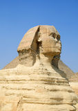 sphinx Image libre de droits