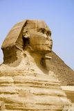 The Sphinx Stock Image