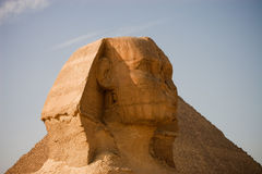 Sphinx. The sphinx in cairo near a pyramid Stock Image