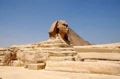Sphinx against pyramids. In Egypt giza Royalty Free Stock Photos